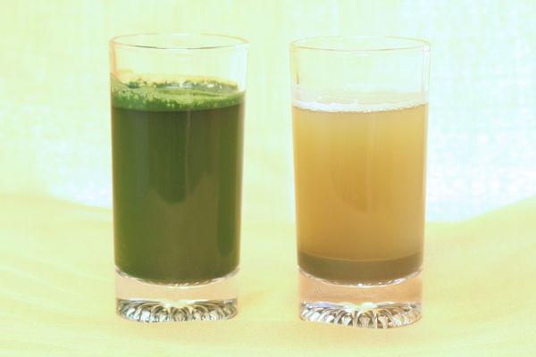 成分抽出青汁(左)と乾燥葉粉砕青汁(右)