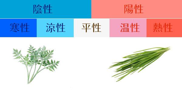 食材の陰陽 グリーンポプリ食養生